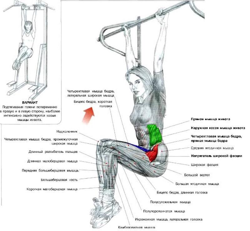 как сделать чтобы колени похудели
