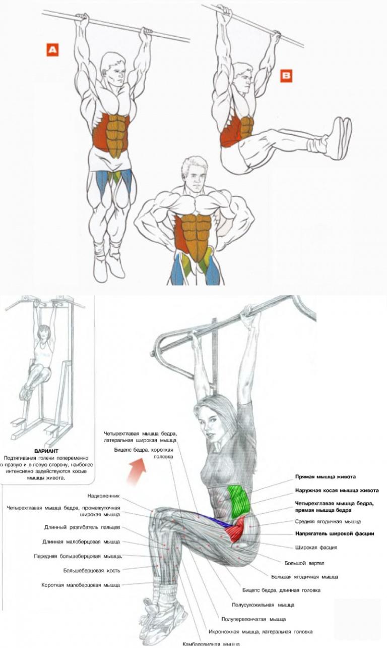 Фитнес 33 тае бо софиямед металические