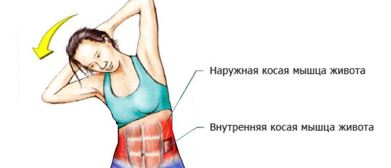 Упражнения на боковой пресс
