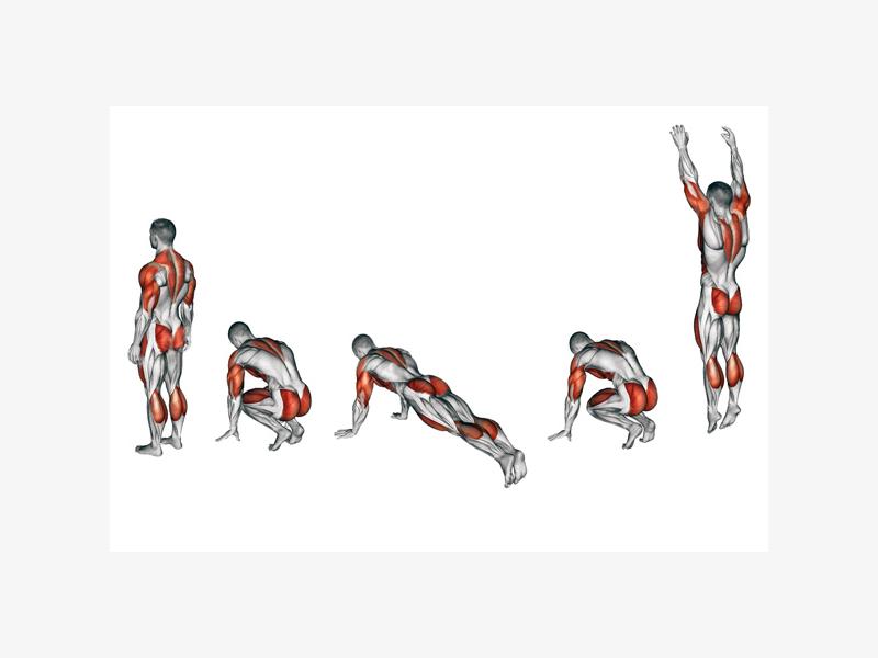 Какие мышцы задействуются при бурпи