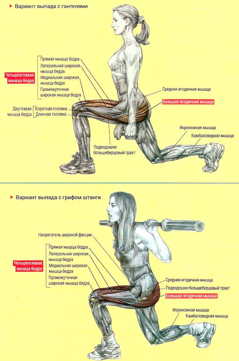 Польза от упражнения