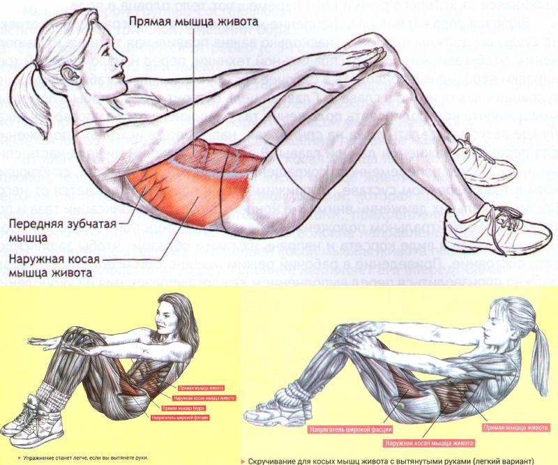 Скручивание с вытянутыми руками для прямых и косых мышц живота