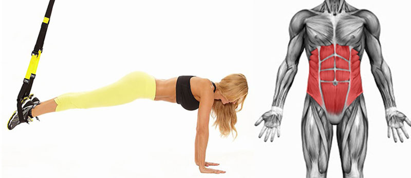 TRX упражнения на мышцы кора (для новичков)