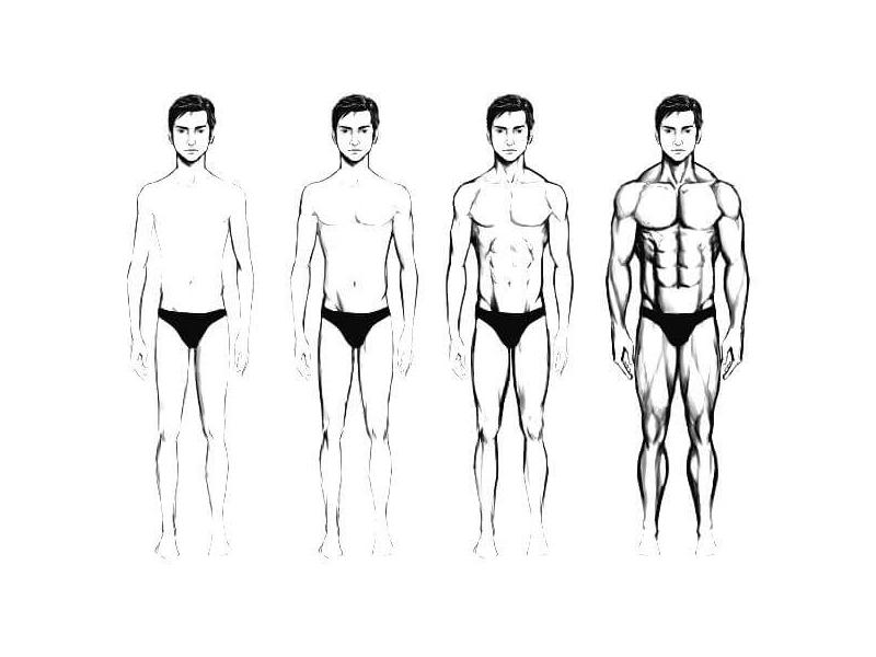 Накачаться худому парню: возможный прогресс при активных тренировках