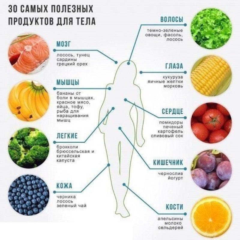 Какие продукты помогут снабдить органы нужными и самыми важными для них витаминами?