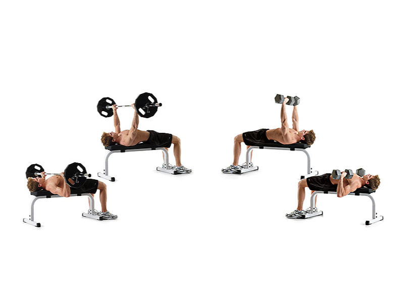 Barbell or Dumbbells Bench Press